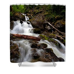 Turbulent Flow Shower Curtain by Mike Reid