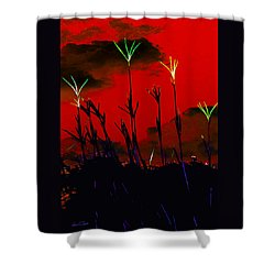 Turkey Foot Grass Abstract - Conflagration 2 Shower Curtain