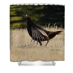 Turkey Shower Curtain