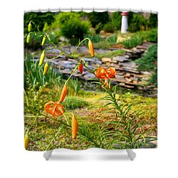 Shower Curtain featuring the photograph Turk's Cap Lily by Kathryn Meyer