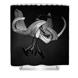 Turk's Cap Survey Shower Curtain