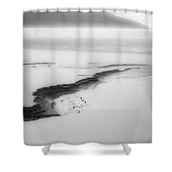 Turnagain Silk Shower Curtain