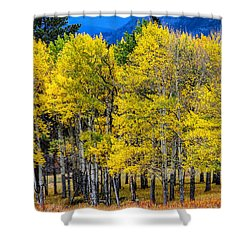 Turning Of The Aspens Shower Curtain by Juli Ellen