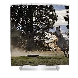 Turning On A Dime Shower Curtain by Wes and Dotty Weber