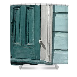 Turquoise Door Shower Curtain by Valerie Reeves