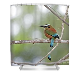 Turquoise Pendant.. Shower Curtain