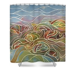 Turtles II Shower Curtain