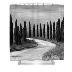 Tuscan Cedars Shower Curtain