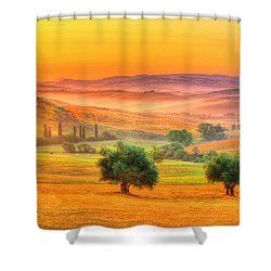 Tuscan Dream Shower Curtain by Midori Chan