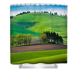 Tuscan Palouse Shower Curtain by Inge Johnsson