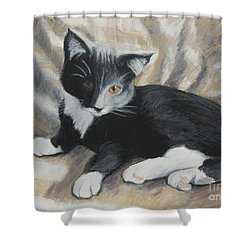Shower Curtain featuring the painting Tuxedo Kitten by Jeanne Fischer