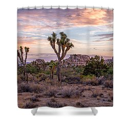 Twilight Comes To Joshua Tree Shower Curtain by Peter Tellone