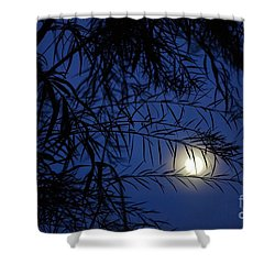 Twilight Moon Shower Curtain by Kerri Mortenson