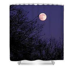Twilight Moon Shower Curtain by Rona Black