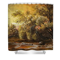 Twilight Shower Curtain by Sorin Apostolescu