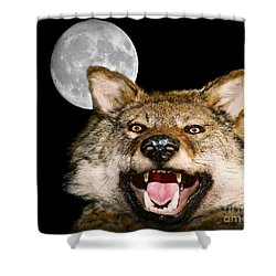 Twilight's Full Moon Shower Curtain by Patrick Witz