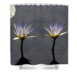 Twin Blue Egyptian Lotus Waterlilies And Dragonfly Shower Curtain by Byron Varvarigos