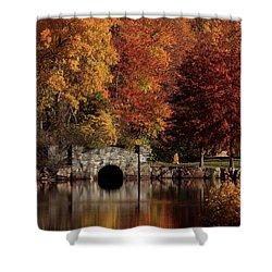 Twin Brooks Shower Curtain by Karol Livote