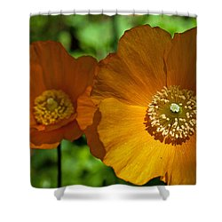 Shower Curtain featuring the photograph Twin Island Poppy by Sabine Edrissi