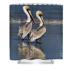 Twin Pelicans Shower Curtain by Deborah Benoit