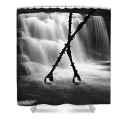 Twin Reflections Shower Curtain by Dan Friend