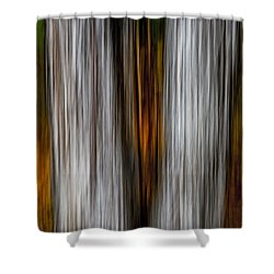 Shower Curtain featuring the photograph Twin Trunks by Darryl Dalton