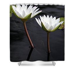 Twin White Water Lilies Shower Curtain by Sabrina L Ryan