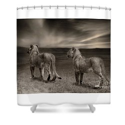 Shower Curtain featuring the photograph Twins 2 by Christine Sponchia