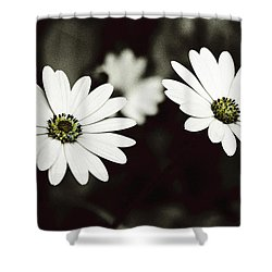 Twins  Shower Curtain by Lana Enderle