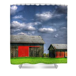 Twins Shower Curtain by Randy Pollard