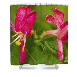 Shower Curtain featuring the photograph Twins by Sara  Raber