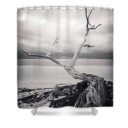 Twisted Shower Curtain by Adam Romanowicz
