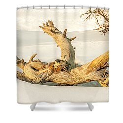 Twisted Dead Tree Shower Curtain