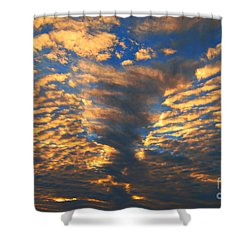 Twisted Sunset Shower Curtain by Janice Westerberg