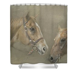 Two Amigos Shower Curtain by Linda Blair