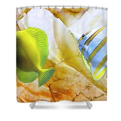 Shower Curtain featuring the photograph Two Angelfish by Janette Boyd