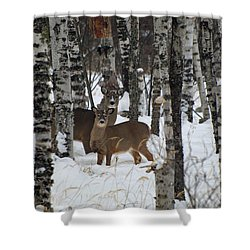 Two Are Better Than One Shower Curtain by James Peterson