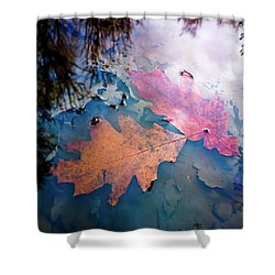 Two Autumn Leaves Shower Curtain by Milan Surkala