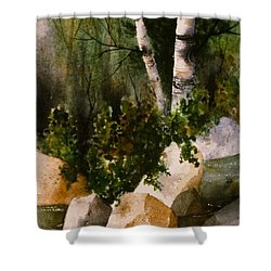 Two Birch By Rocky Stream Shower Curtain by Teresa Ascone