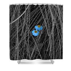 Two Blue Shower Curtain by Douglas Barnard
