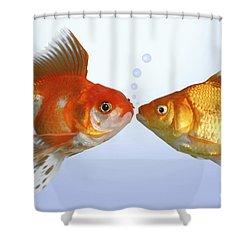 Two Fish Kissing Fs502 Shower Curtain by Greg Cuddiford