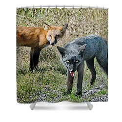 Two Fox Seattle Shower Curtain by Jennie Breeze