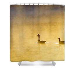 Two Geese Shower Curtain by Tommytechno Sweden