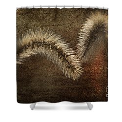 Two Grass Flowers Shower Curtain by Heiko Koehrer-Wagner