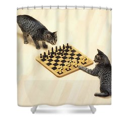 Two Grey Tabby Cats Playing Shower Curtain by Thomas Kitchin & Victoria Hurst