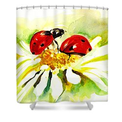 Two Ladybugs In Daisy After My Original Watercolor Shower Curtain by Tiberiu Soos