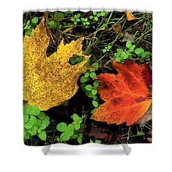 Two Leaves Shower Curtain