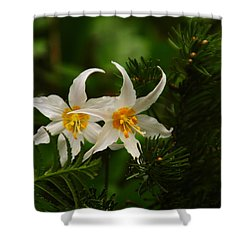 Two Lilies Shower Curtain