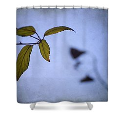 Two Monsters In The Shadows Shower Curtain by Guido Montanes Castillo
