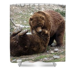 Two Of A Kind Shower Curtain by Amanda Eberly-Kudamik